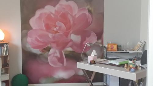 entretien-annie-letourneux-fleurs-de-bach